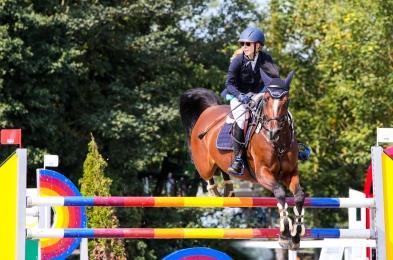 pferd-9